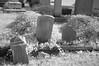Elmwood Cemetery 082