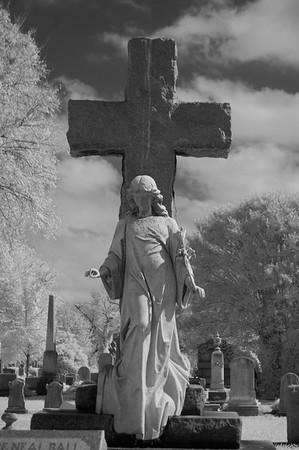 Elmwood Cemetery 051
