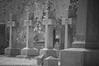 Elmwood Cemetery 116