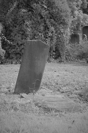 Elmwood Cemetery 088