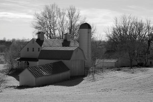 Cole Farm 095