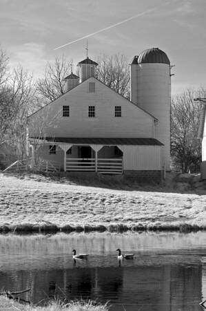 Cole Farm 082