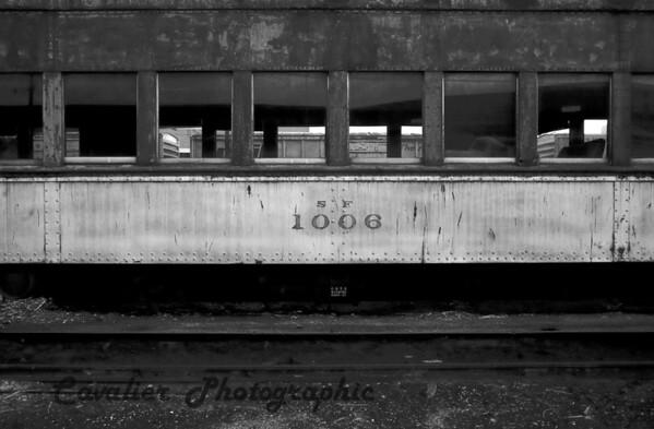 DGrin 2009 300