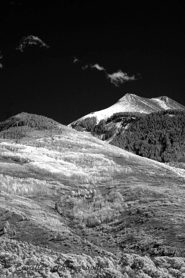 Dgrin SO 2008 - 425<br /> <br /> Lasal Mountain Loop, Moab, Utah