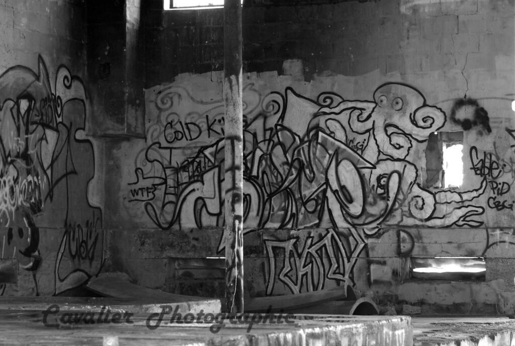 Dgrin SO 2008 - 836