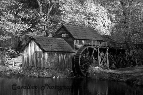 Mabry Mill Run CIR 0028