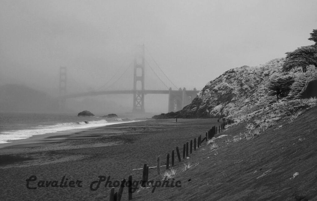 San Francisco CIR 497<br /> <br /> View of the Golden Gate Bridge from Baker Beach