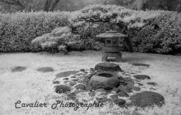 San Francisco CIR 315<br /> <br /> Japanese Tea Gardens, Golden Gate Park