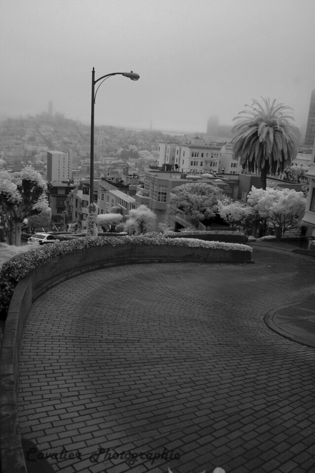 San Francisco CIR 167<br /> <br /> Lombard St. - Coit Tower and the Bay Bridge are visible in the fog in the background