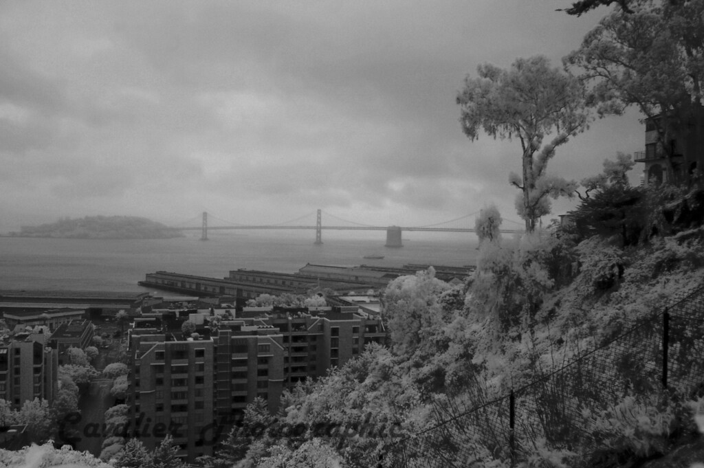 San Francisco CIR 129<br /> <br /> View of the Bay Bridge from Coit Tower