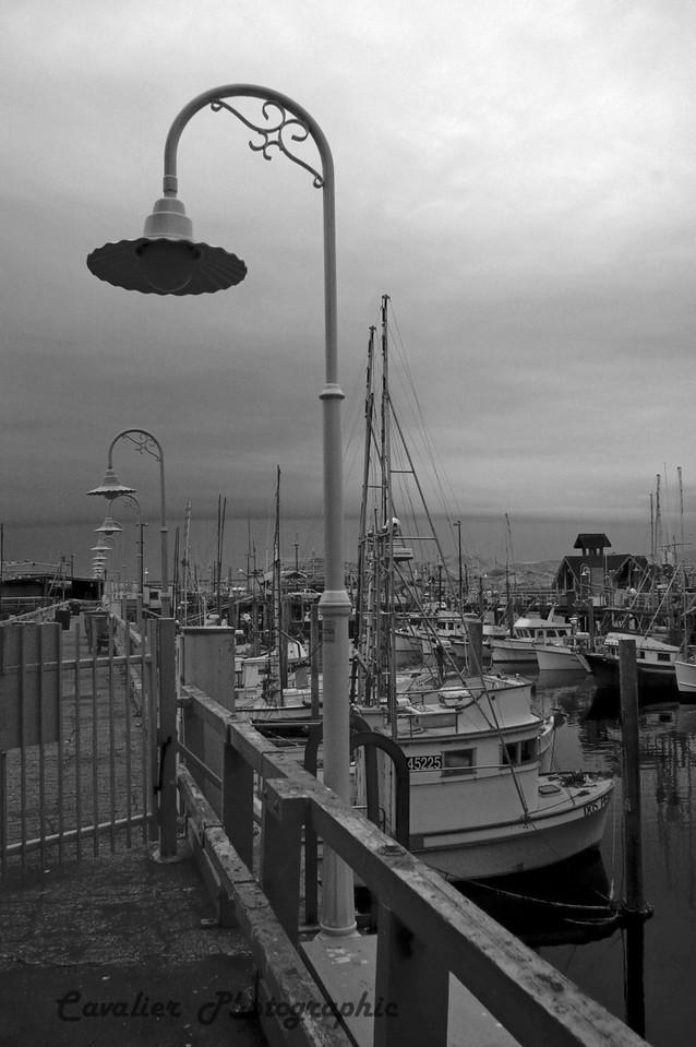 San Francisco CIR 060<br /> <br /> Fisherman's Wharf