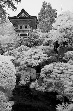 San Francisco CIR 333<br /> <br /> Japanese Tea Gardens, Golden Gate Park