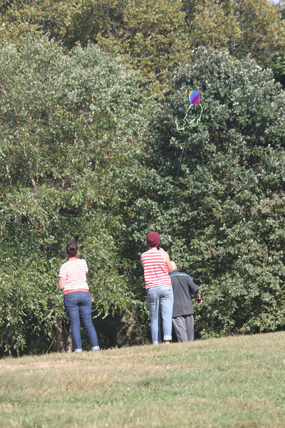 Tailed kite - 6