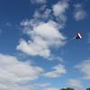 Serious kite - 03