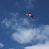 Serious kite - 26