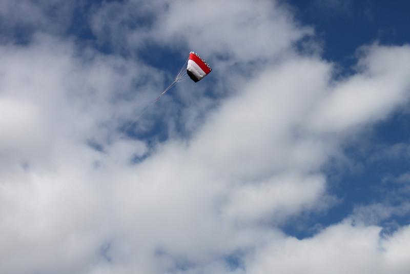 Serious kite - 24