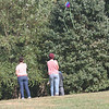 Tailed kite - 7