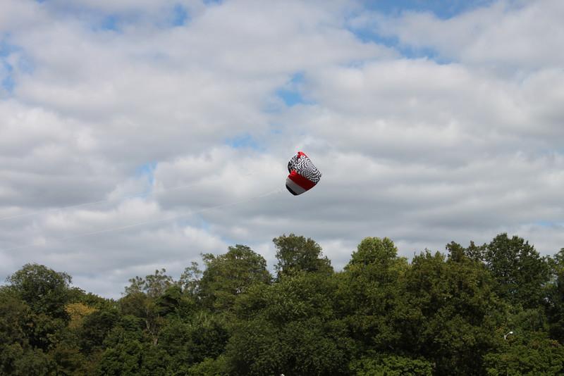 Serious kite - 17