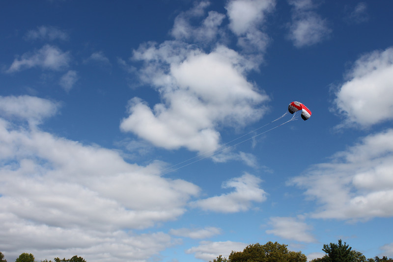 Serious kite - 04