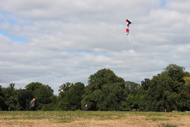 Serious kite - 20