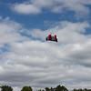 Serious kite - 13