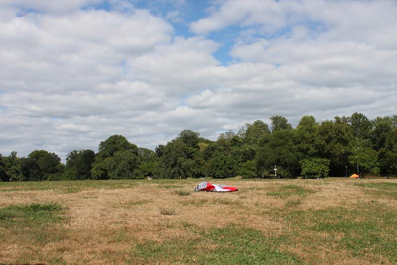 Serious kite - 06