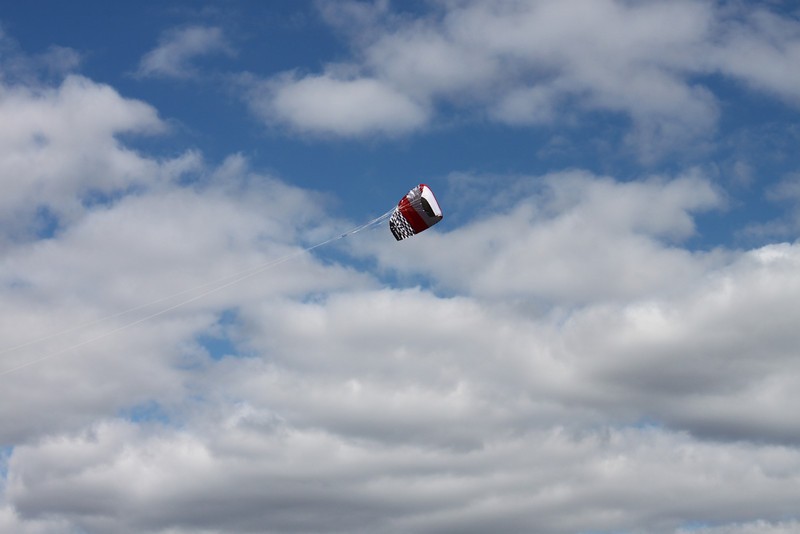 Serious kite - 14