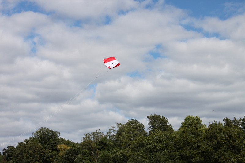 Serious kite - 19