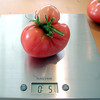 Multi-lobed (double) fruit from Plant 3.  Weight = 5 3/4 oz.
