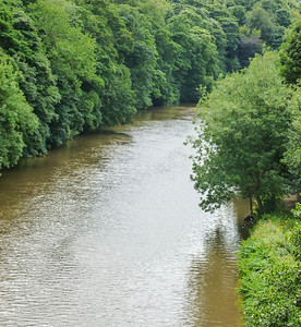 The River Wear