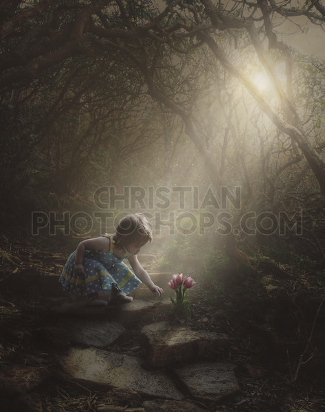 Little girl finding flowers in the forest