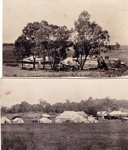 Woodside early convention