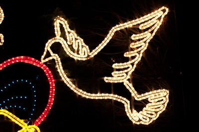 Christmas dove lights