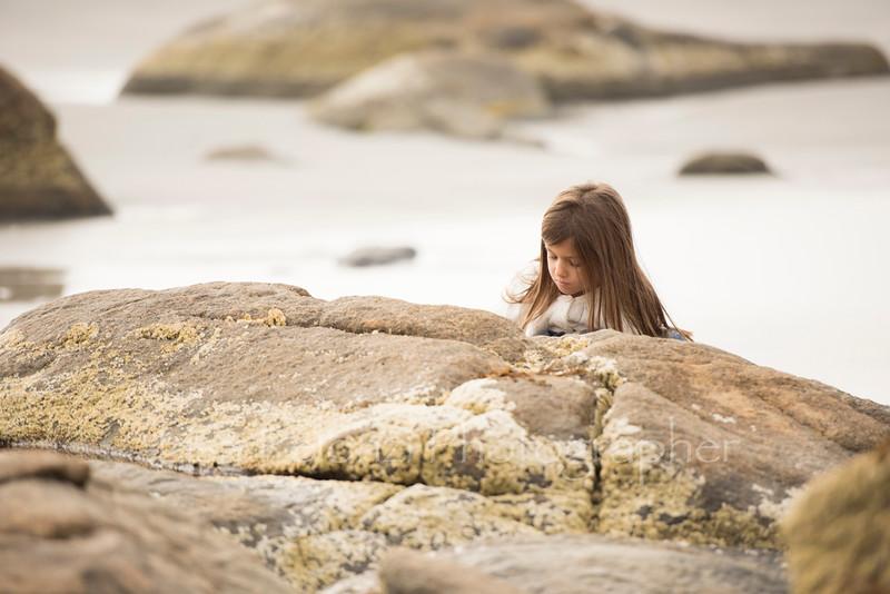 _DSC5436web©lisapelonzi