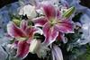 07-10-2006 2-00-23 PM-1298C