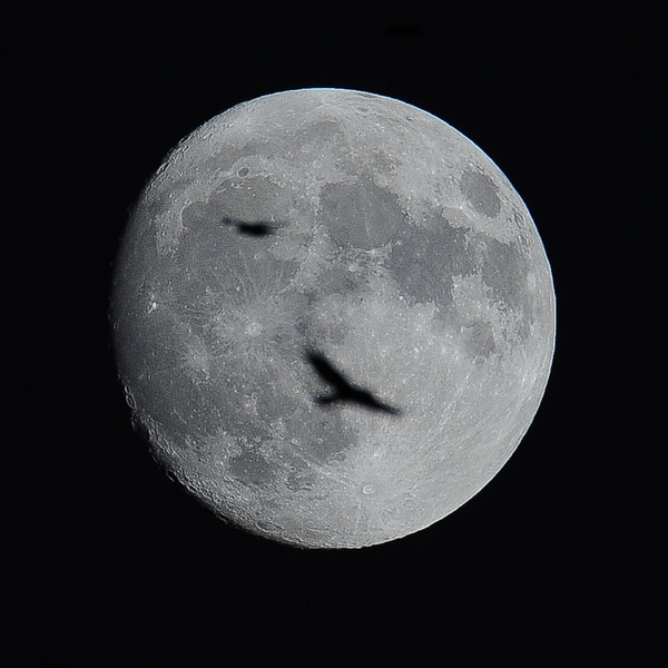 Moon with crows