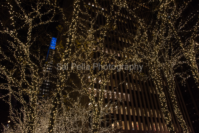 NYC December 2016