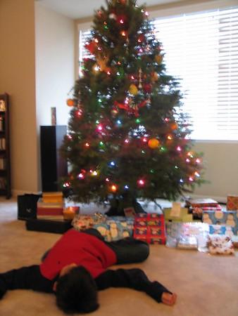 Christmas 2005, Pleasanton, CA