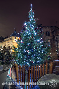 Christmas Tree on Byres Road