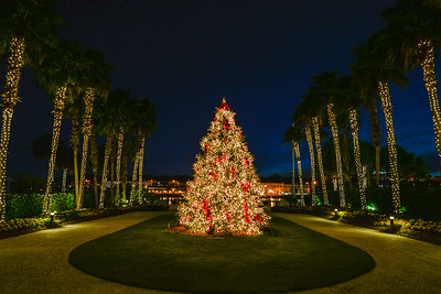 Christmas at The Westin Savannah