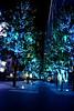 Christmas Illumination - 秋葉原