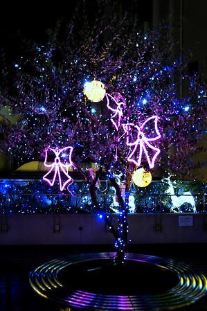 Christmas tree - 荻窪