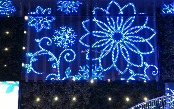 Christmas Illumination - 新宿MYLOAD
