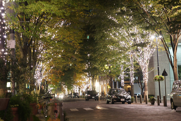 Christmas illuminations - 丸の内