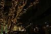 Christmas illumination - 東京ミッドタウン