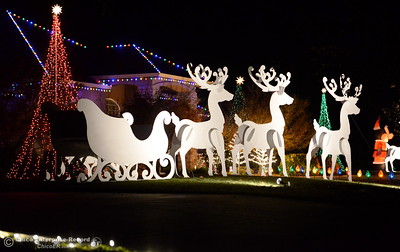 Larger than life cuttouts of deer drawing a sleigh help decorate a large front lawn area on this home on Roberts Court in North Chico with Christmas Lights in Chico, Calif. Tues. Dec. 6, 2016. (Bill Husa -- Enterprise-Record)