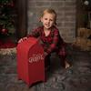 Christmas Mini Sessions 2018 (1788)