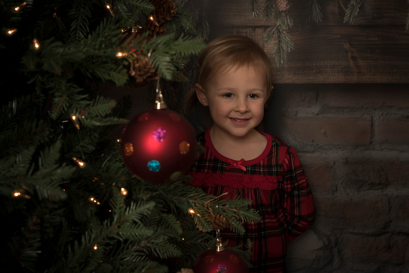 Christmas Mini Sessions 2018 (1824)