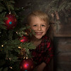 Christmas Mini Sessions 2018 (1809)
