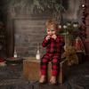 Christmas Mini Sessions 2018 (1526)